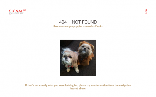 Signal 404 page screenshot